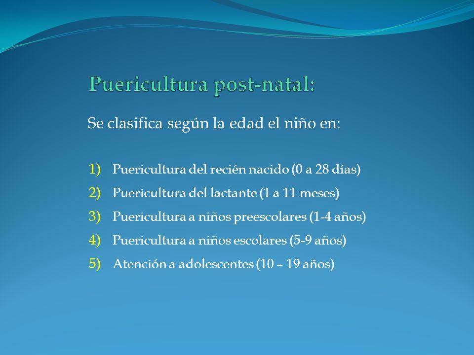 1) Puericultura del recién nacido (0 a 28 días) 2) Puericultura del lactante (1 a 11 meses) 3) Puericultura a niños preescolares (1-4 años) 4) Puericu