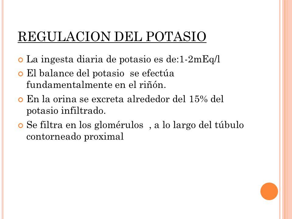 REGULACION DEL POTASIO La ingesta diaria de potasio es de:1-2mEq/l El balance del potasio se efectúa fundamentalmente en el riñón. En la orina se excr
