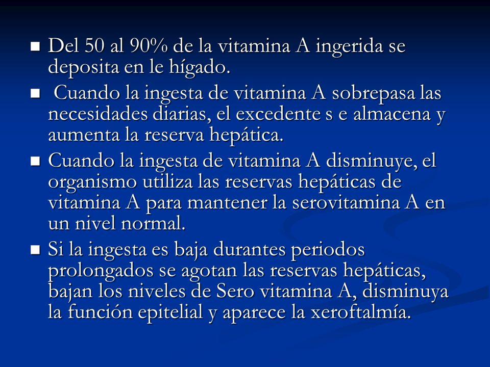 Del 50 al 90% de la vitamina A ingerida se deposita en le hígado. Del 50 al 90% de la vitamina A ingerida se deposita en le hígado. Cuando la ingesta