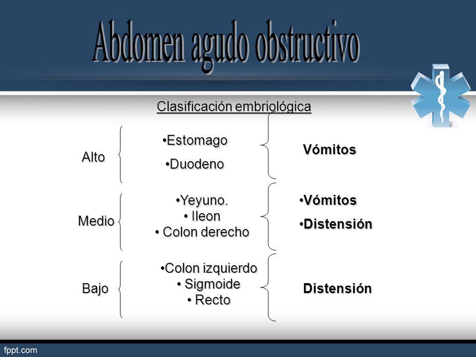 Clasificación embriológica Alto Medio Bajo EstomagoEstomago DuodenoDuodeno Yeyuno.Yeyuno. Ileon Ileon Colon derecho Colon derecho Colon izquierdoColon