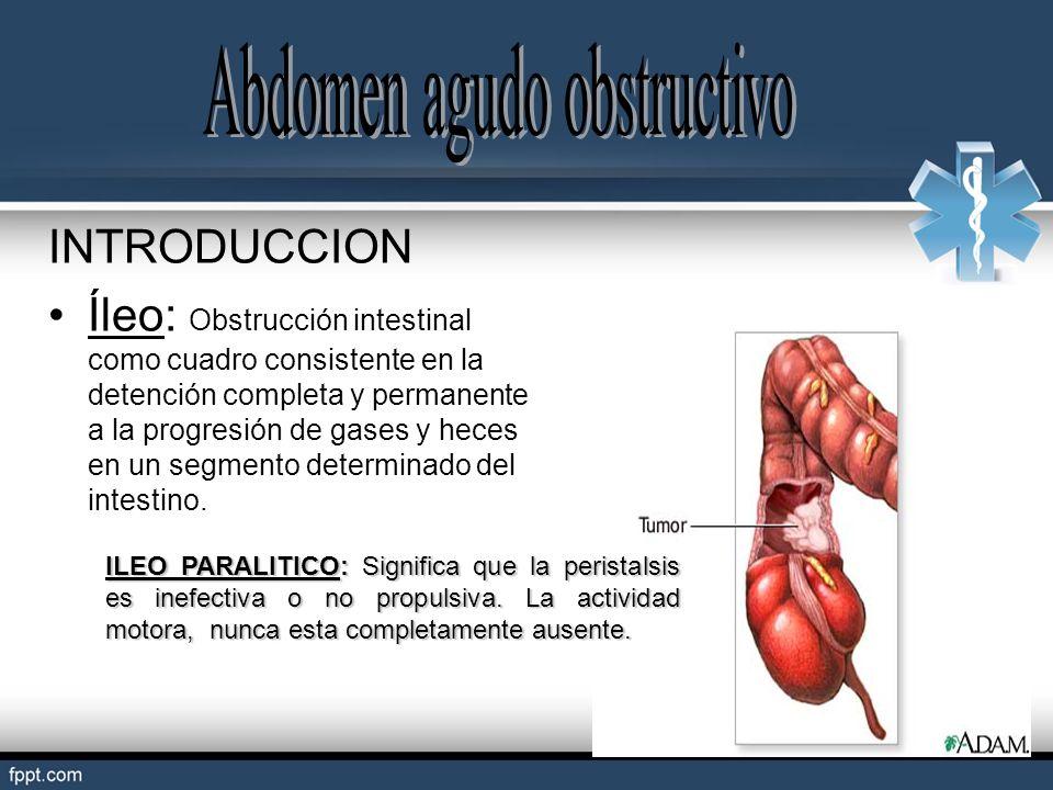 INTRODUCCION Íleo: Obstrucción intestinal como cuadro consistente en la detención completa y permanente a la progresión de gases y heces en un segment