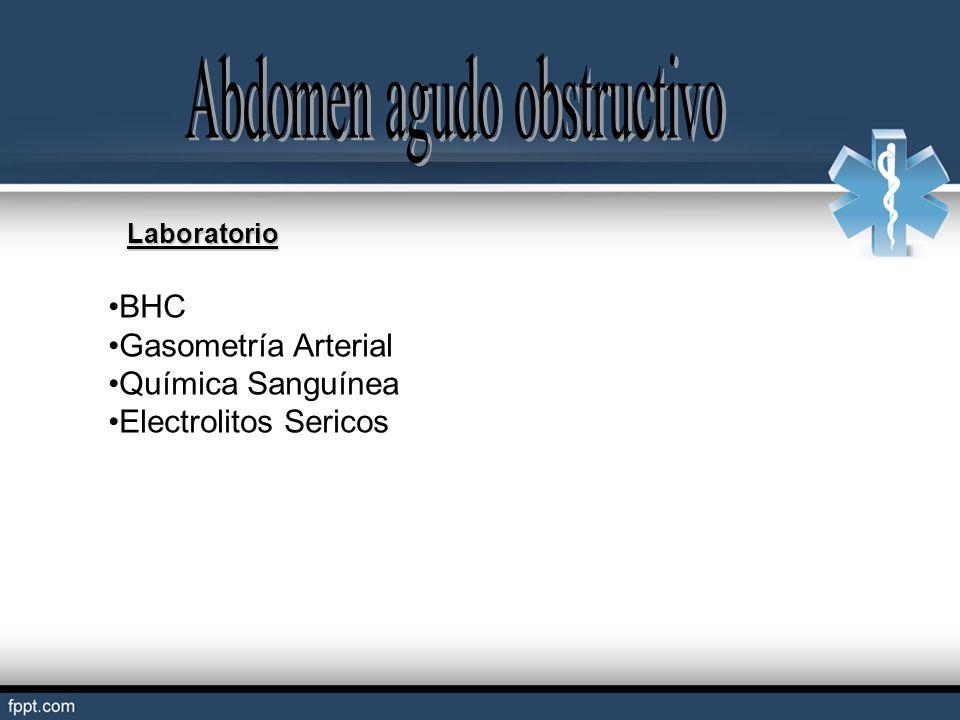 BHC Gasometría Arterial Química Sanguínea Electrolitos Sericos Laboratorio