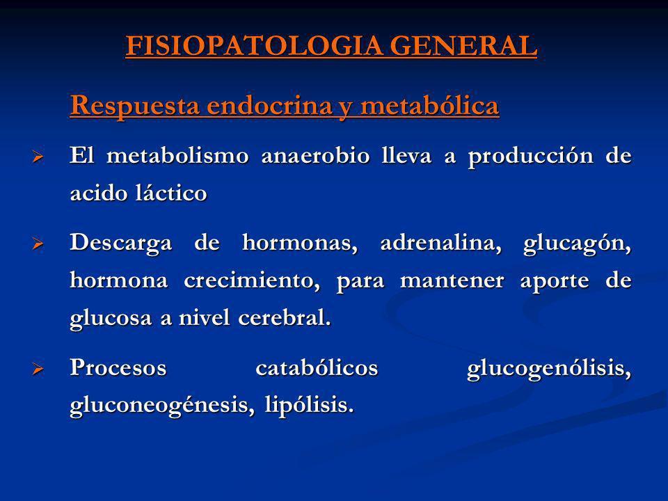 FISIOPATOLOGIA GENERAL Sistema nervioso central Si la PAM disminuye a < de 60 se desarrollan: alteraciones neurológicas inquietud, convulsión, estupor, coma, muerte.