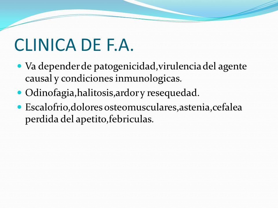 CLINICA DE F.A. Va depender de patogenicidad,virulencia del agente causal y condiciones inmunologicas. Odinofagia,halitosis,ardor y resequedad. Escalo