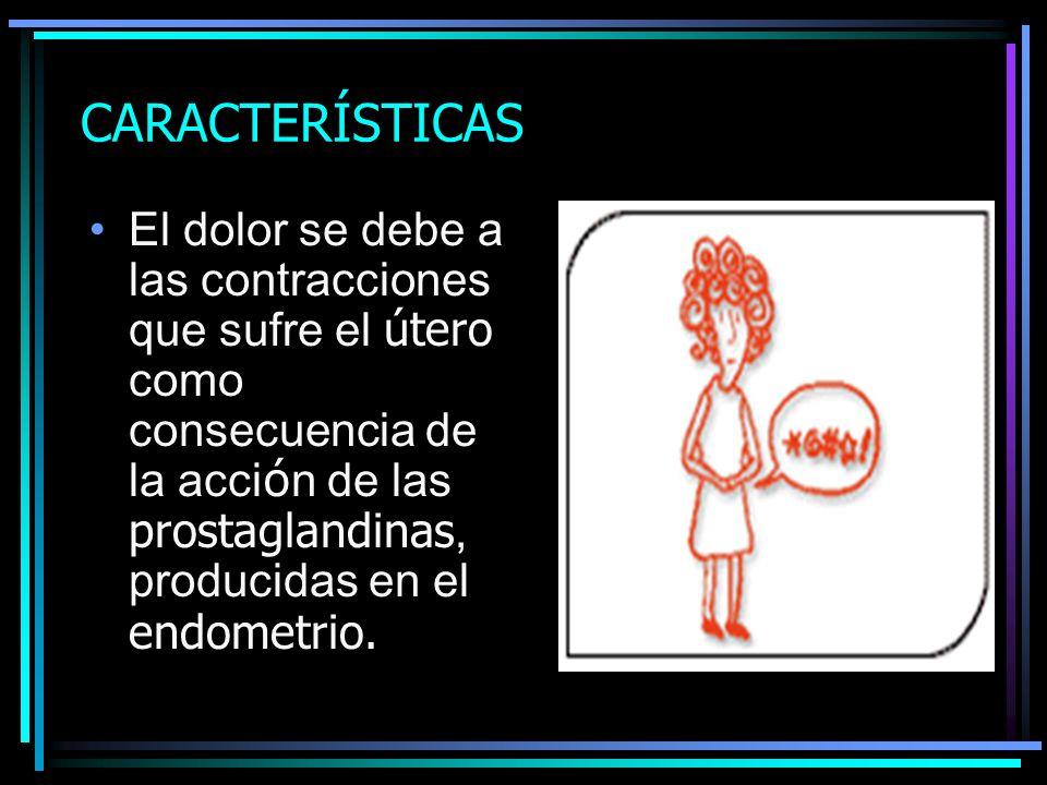 CARACTERÍSTICAS El dolor se debe a las contracciones que sufre el útero como consecuencia de la acci ó n de las prostaglandinas, producidas en el endo