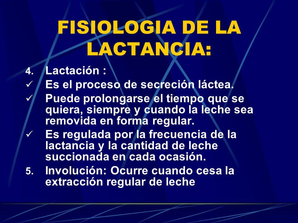 FISIOLOGIA DE LA LACTANCIA: 4. Lactación : Es el proceso de secreción láctea. Puede prolongarse el tiempo que se quiera, siempre y cuando la leche sea