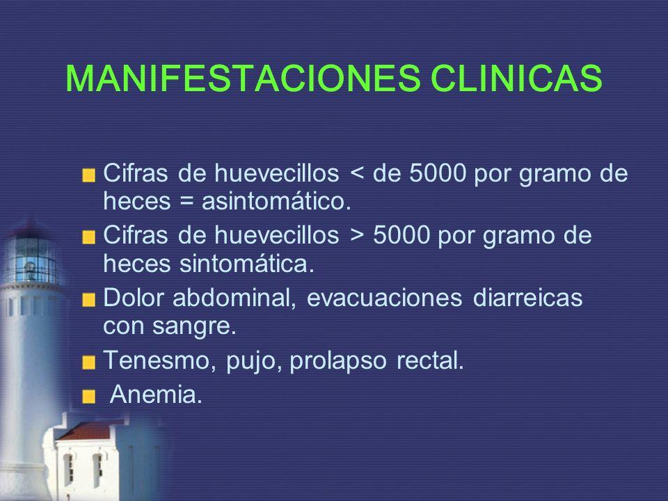 MANIFESTACIONES CLINICAS Cifras de huevecillos < de 5000 por gramo de heces = asintomático. Cifras de huevecillos > 5000 por gramo de heces sintomátic