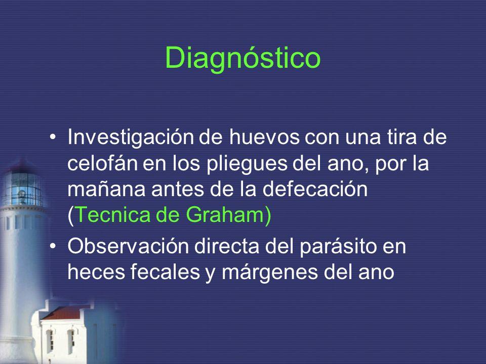 Diagnóstico Investigación de huevos con una tira de celofán en los pliegues del ano, por la mañana antes de la defecación (Tecnica de Graham) Observac