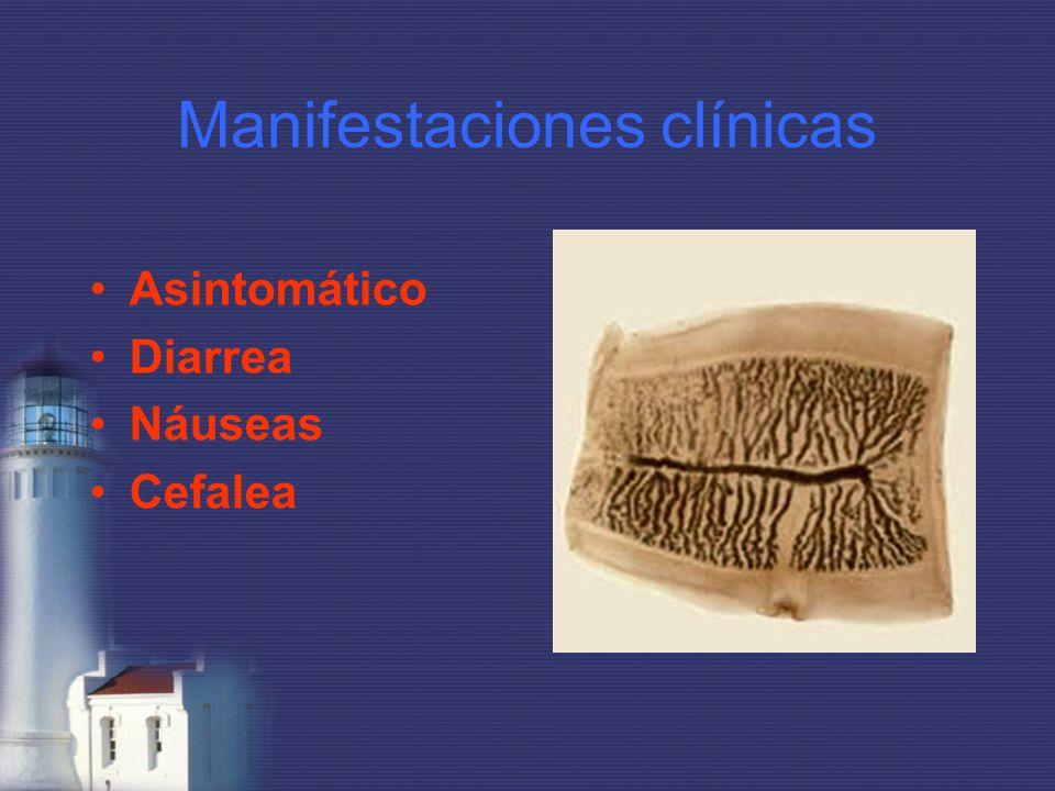 Manifestaciones clínicas Asintomático Diarrea Náuseas Cefalea