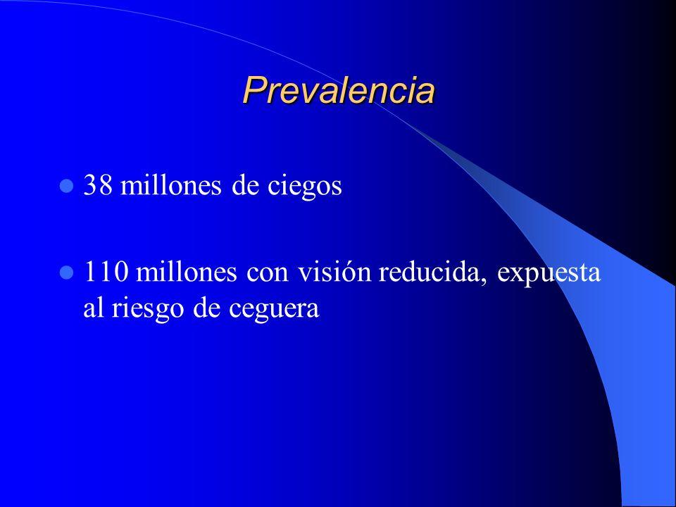 Prevalencia 38 millones de ciegos 110 millones con visión reducida, expuesta al riesgo de ceguera