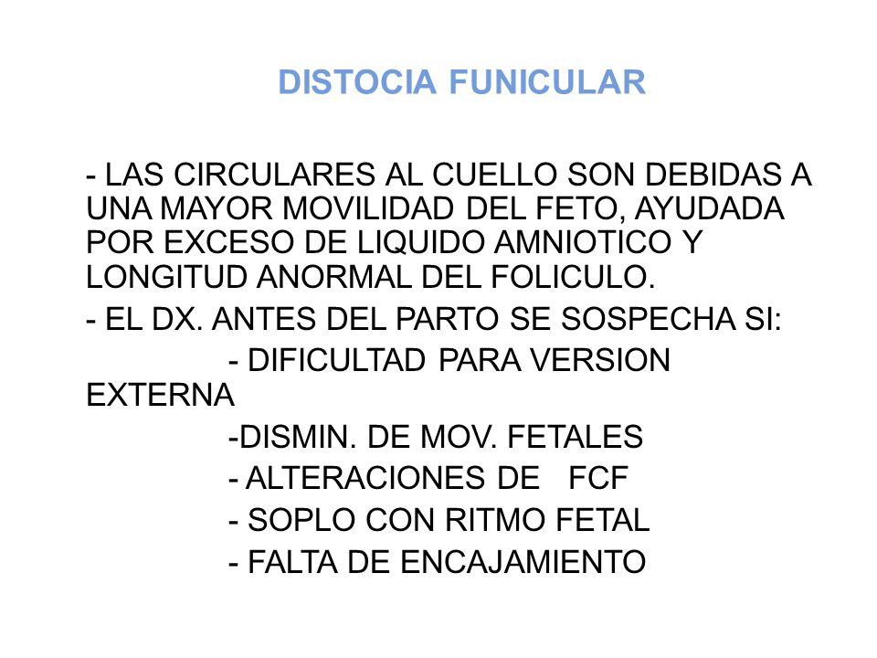 DISTOCIA FUNICULAR - LAS CIRCULARES AL CUELLO SON DEBIDAS A UNA MAYOR MOVILIDAD DEL FETO, AYUDADA POR EXCESO DE LIQUIDO AMNIOTICO Y LONGITUD ANORMAL D