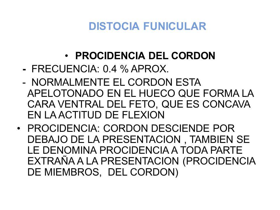 DISTOCIA FUNICULAR PROCIDENCIA DEL CORDON - FRECUENCIA: 0.4 % APROX. - NORMALMENTE EL CORDON ESTA APELOTONADO EN EL HUECO QUE FORMA LA CARA VENTRAL DE