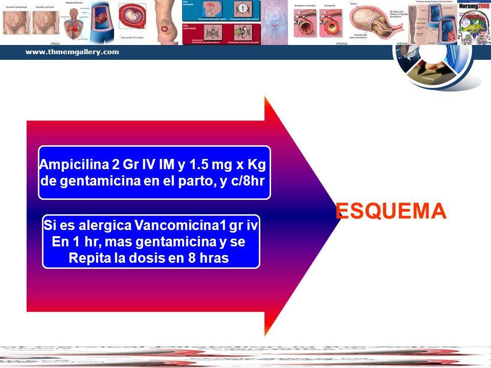 www.thmemgallery.com Company Logo Diagram Ampicilina 2 Gr IV IM y 1.5 mg x Kg de gentamicina en el parto, y c/8hr Si es alergica Vancomicina1 gr iv En
