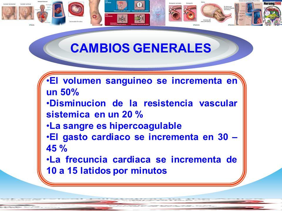www.themegallery.com Company Logo El volumen sanguineo se incrementa en un 50% Disminucion de la resistencia vascular sistemica en un 20 % La sangre e