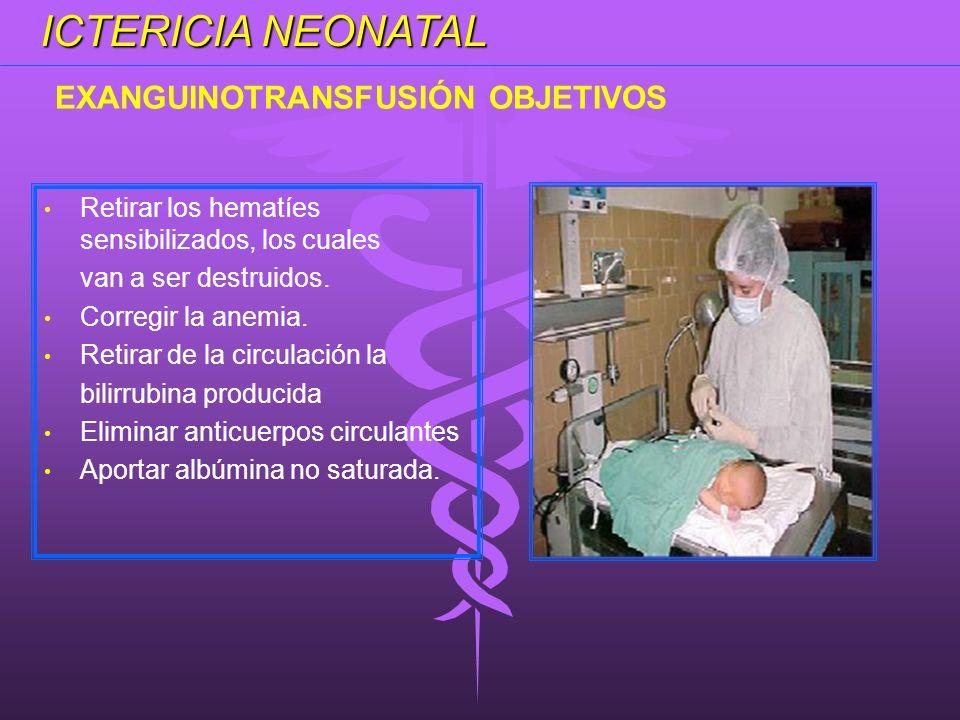 Retirar los hematíes sensibilizados, los cuales van a ser destruidos. Corregir la anemia. Retirar de la circulación la bilirrubina producida Eliminar