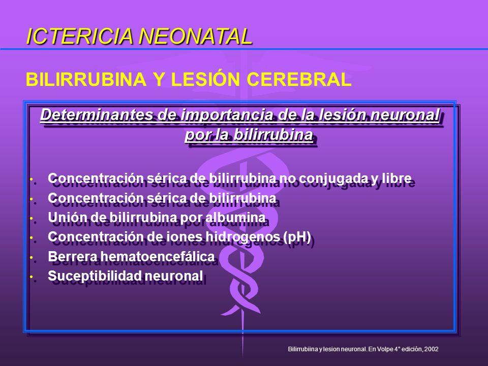 Determinantes de importancia de la lesión neuronal por la bilirrubina Concentración sérica de bilirrubina no conjugada y libre Concentración sérica de