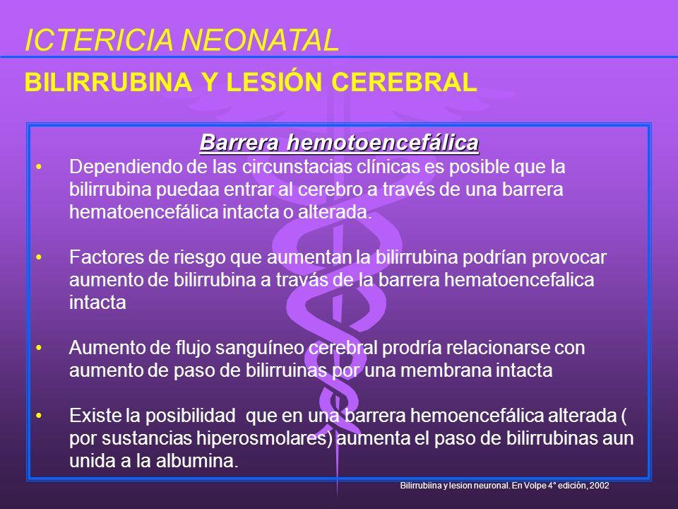 ICTERICIA NEONATAL Barrera hemotoencefálica Dependiendo de las circunstacias clínicas es posible que la bilirrubina puedaa entrar al cerebro a través