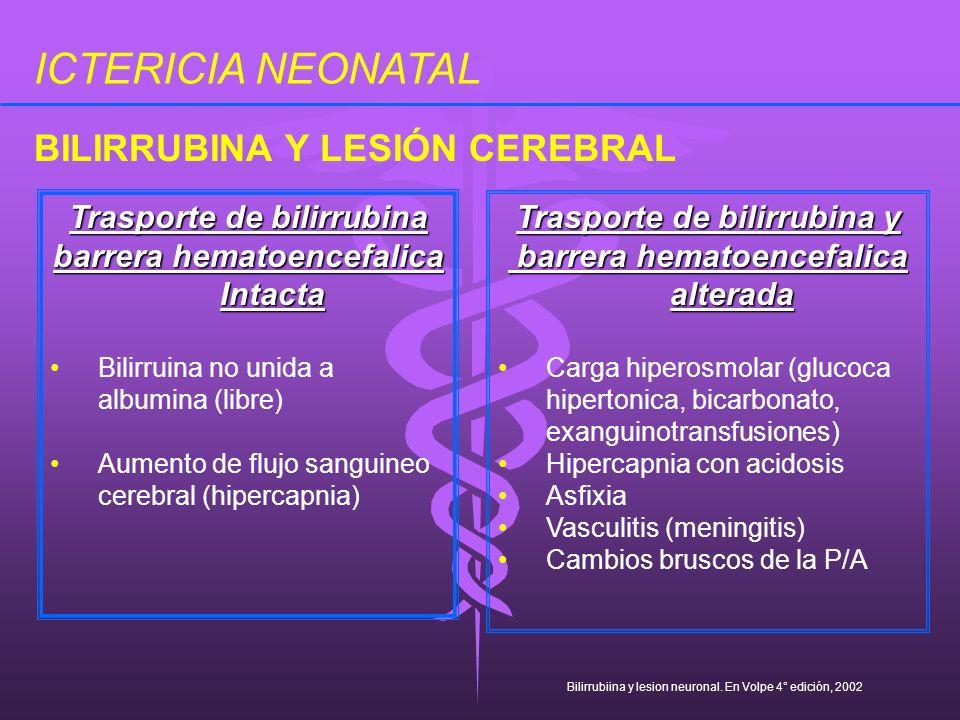ICTERICIA NEONATAL Trasporte de bilirrubina barrera hematoencefalica Intacta Bilirruina no unida a albumina (libre) Aumento de flujo sanguineo cerebra