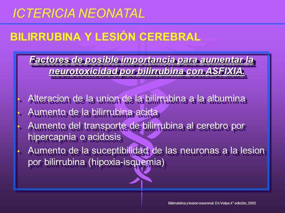 Factores de posible importancia para aumentar la neurotoxicidad por bilirrubina con ASFIXIA. Alteracion de la union de la bilirrubina a la albumina Au
