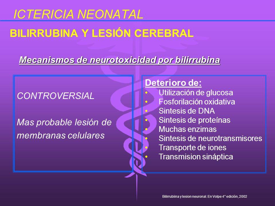 ICTERICIA NEONATAL CONTROVERSIAL Mas probable lesión de membranas celulares BILIRRUBINA Y LESIÓN CEREBRAL Mecanismos de neurotoxicidad por bilirrubina
