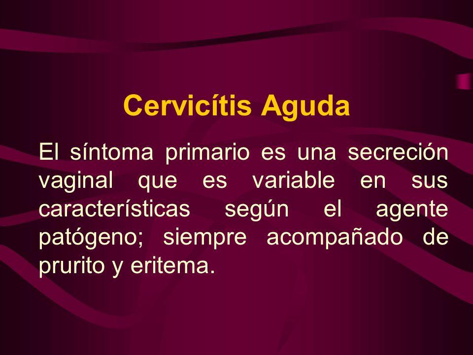 Cervicítis Aguda El síntoma primario es una secreción vaginal que es variable en sus características según el agente patógeno; siempre acompañado de p