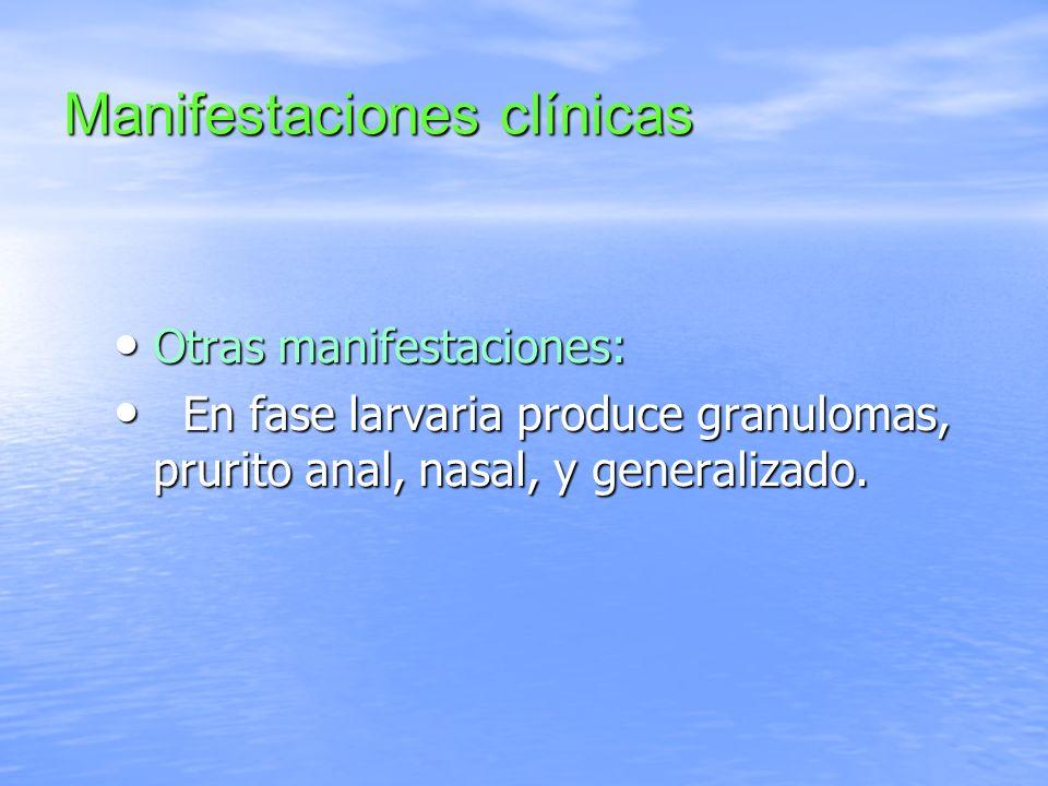 Manifestaciones clínicas Otras manifestaciones: Otras manifestaciones: En fase larvaria produce granulomas, prurito anal, nasal, y generalizado. En fa