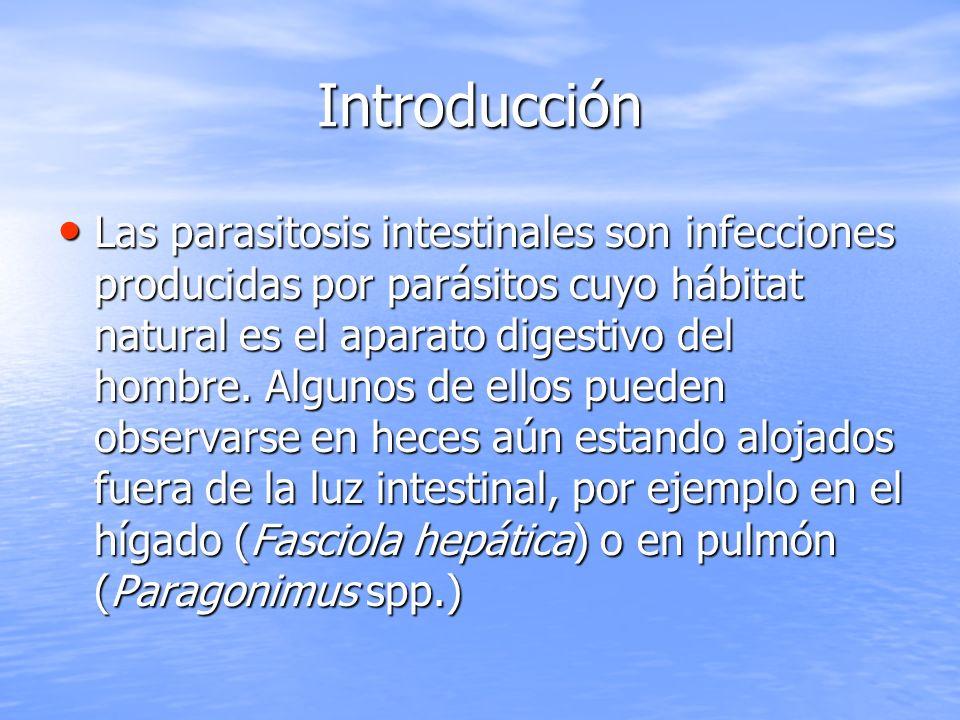 Introducción Las parasitosis intestinales son infecciones producidas por parásitos cuyo hábitat natural es el aparato digestivo del hombre. Algunos de