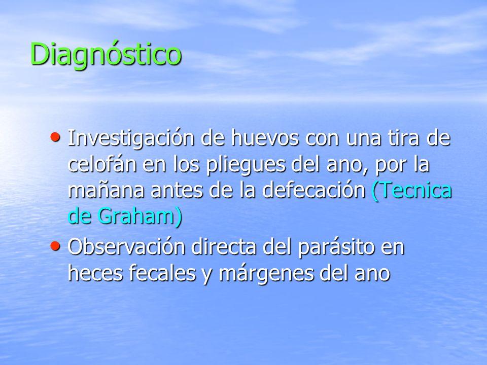 Diagnóstico Investigación de huevos con una tira de celofán en los pliegues del ano, por la mañana antes de la defecación (Tecnica de Graham) Investig