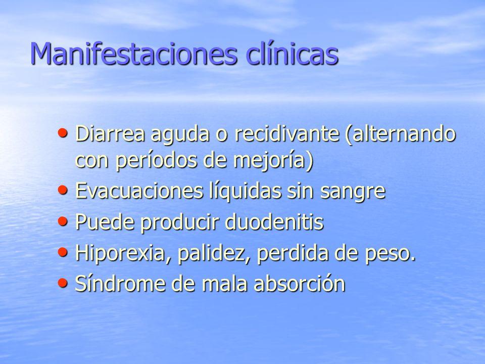 Manifestaciones clínicas Diarrea aguda o recidivante (alternando con períodos de mejoría) Diarrea aguda o recidivante (alternando con períodos de mejo