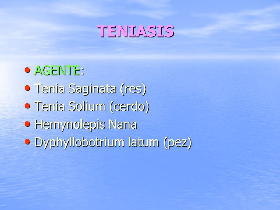 TENIASIS AGENTE: AGENTE: Tenia Saginata (res) Tenia Saginata (res) Tenia Solium (cerdo) Tenia Solium (cerdo) Hemynolepis Nana Hemynolepis Nana Dyphyll