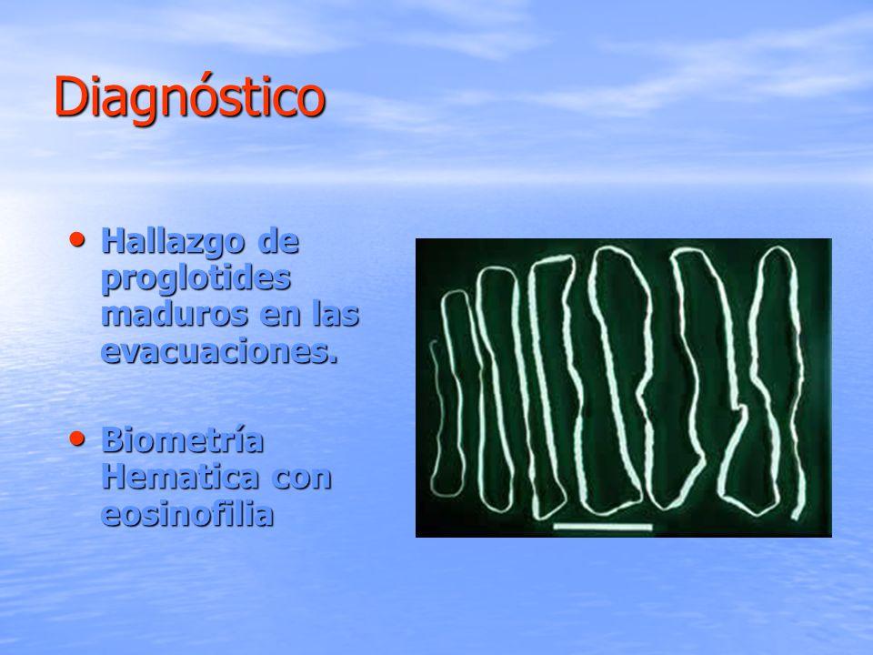 Diagnóstico Hallazgo de proglotides maduros en las evacuaciones. Hallazgo de proglotides maduros en las evacuaciones. Biometría Hematica con eosinofil