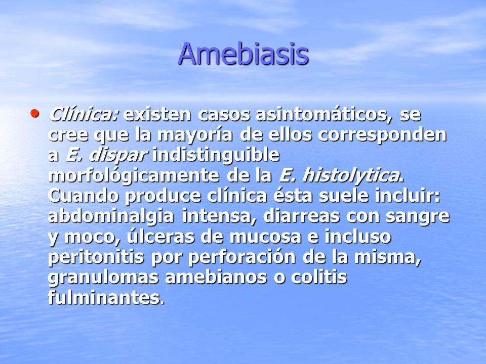 Amebiasis La forma extraintestinal más común es el absceso hepático (con supuración achocolatada, fiebre, malestar general, pérdida de peso y en ocasiones hepatomegalia), otras formas son la neumonía o pleuritis amebiana, la anemia, amebiasis genitourinaria, cutánea o cerebral La forma extraintestinal más común es el absceso hepático (con supuración achocolatada, fiebre, malestar general, pérdida de peso y en ocasiones hepatomegalia), otras formas son la neumonía o pleuritis amebiana, la anemia, amebiasis genitourinaria, cutánea o cerebral
