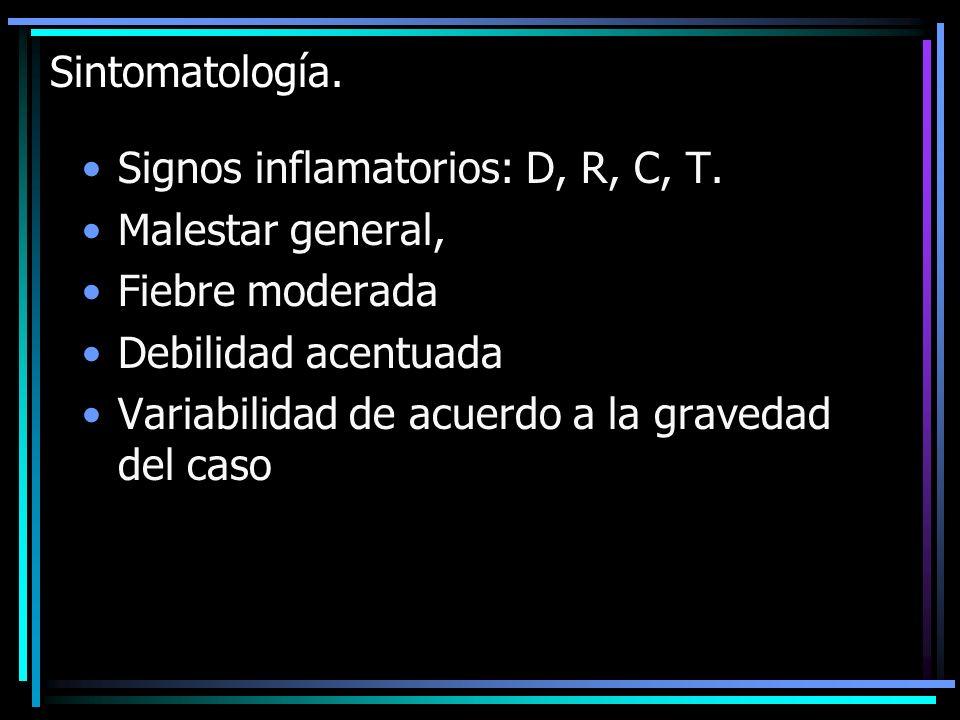 Sintomatología. Signos inflamatorios: D, R, C, T. Malestar general, Fiebre moderada Debilidad acentuada Variabilidad de acuerdo a la gravedad del caso