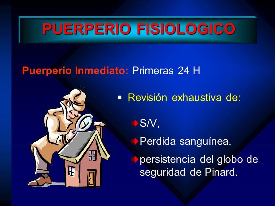 Puerperio Tardío: 45 – 60 días Características Generales Corresponde fundamentalmente a la mujer que amamanta Se observa una vagina bien involucionada y un endometrio hipotrófico.