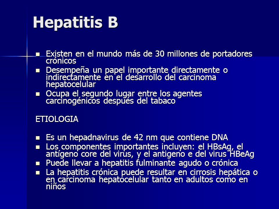 Hepatitis B Existen en el mundo más de 30 millones de portadores crónicos Existen en el mundo más de 30 millones de portadores crónicos Desempeña un p
