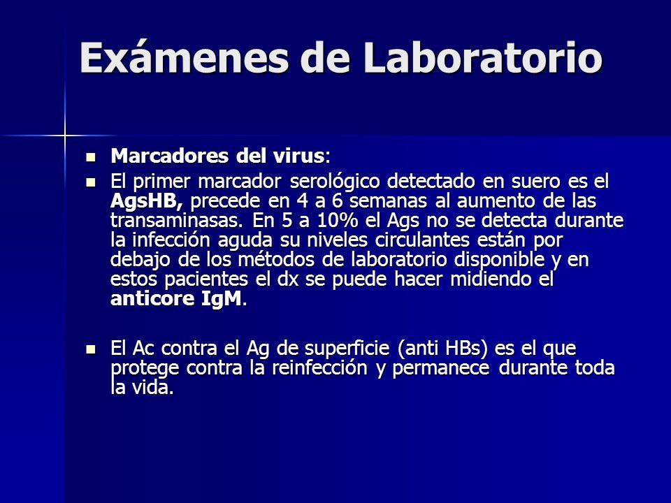 Exámenes de Laboratorio Marcadores del virus: Marcadores del virus: El primer marcador serológico detectado en suero es el AgsHB, precede en 4 a 6 sem