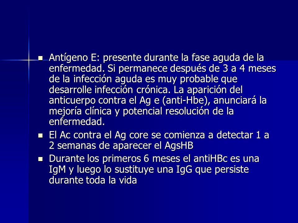Antígeno E: presente durante la fase aguda de la enfermedad. Si permanece después de 3 a 4 meses de la infección aguda es muy probable que desarrolle