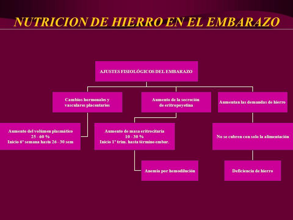 NUTRICION DE HIERRO EN EL EMBARAZO