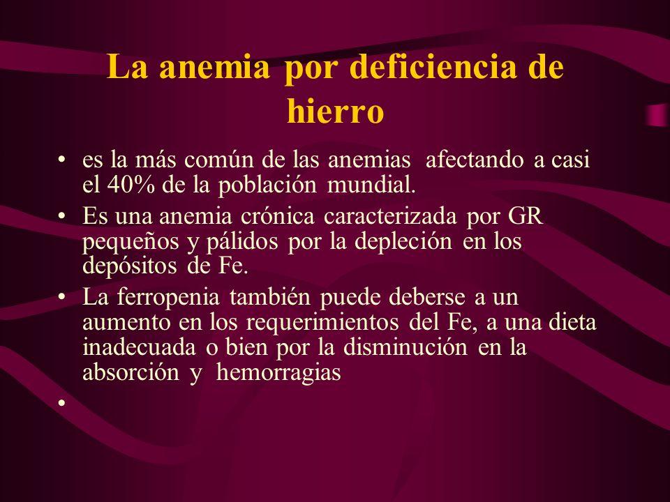 La anemia por deficiencia de hierro es la más común de las anemias afectando a casi el 40% de la población mundial. Es una anemia crónica caracterizad