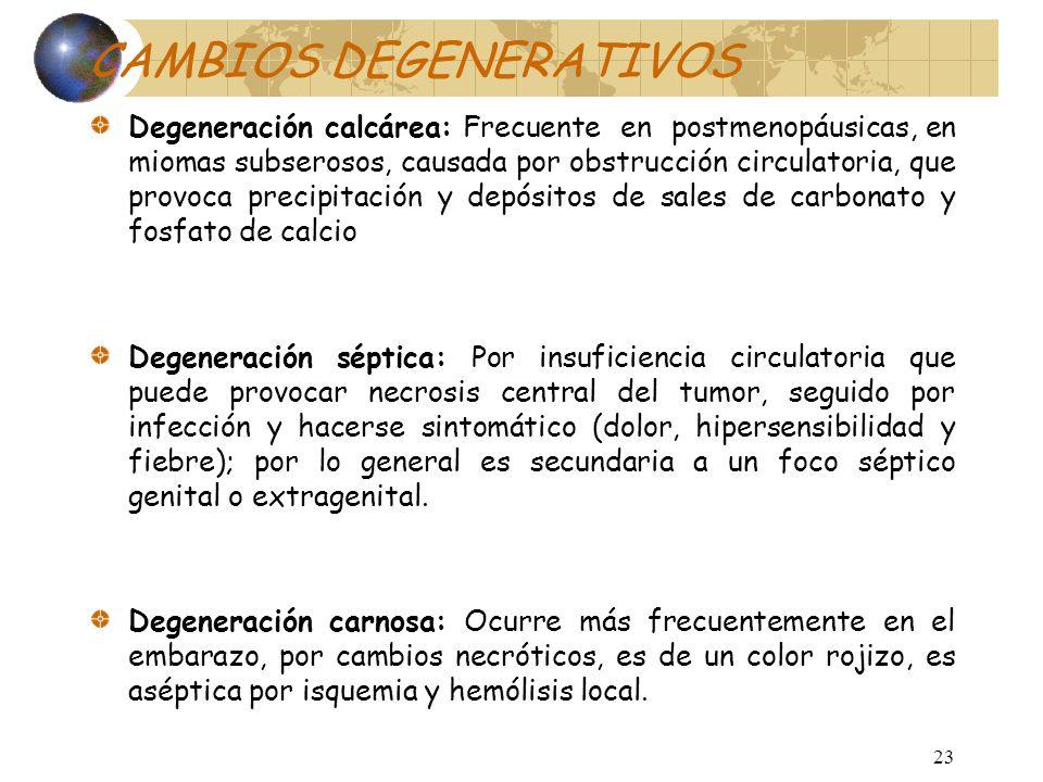 22 CAMBIOS DEGENERATIVOS Degeneración hialina: Es el tipo más común, esta presente en casi todos los miomas. Se ocasiona por sobrecrecimiento de eleme
