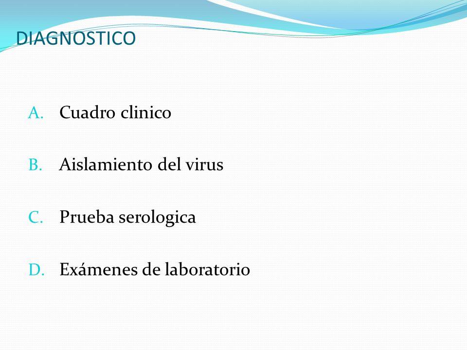 DIAGNOSTICO A. Cuadro clinico B. Aislamiento del virus C. Prueba serologica D. Exámenes de laboratorio