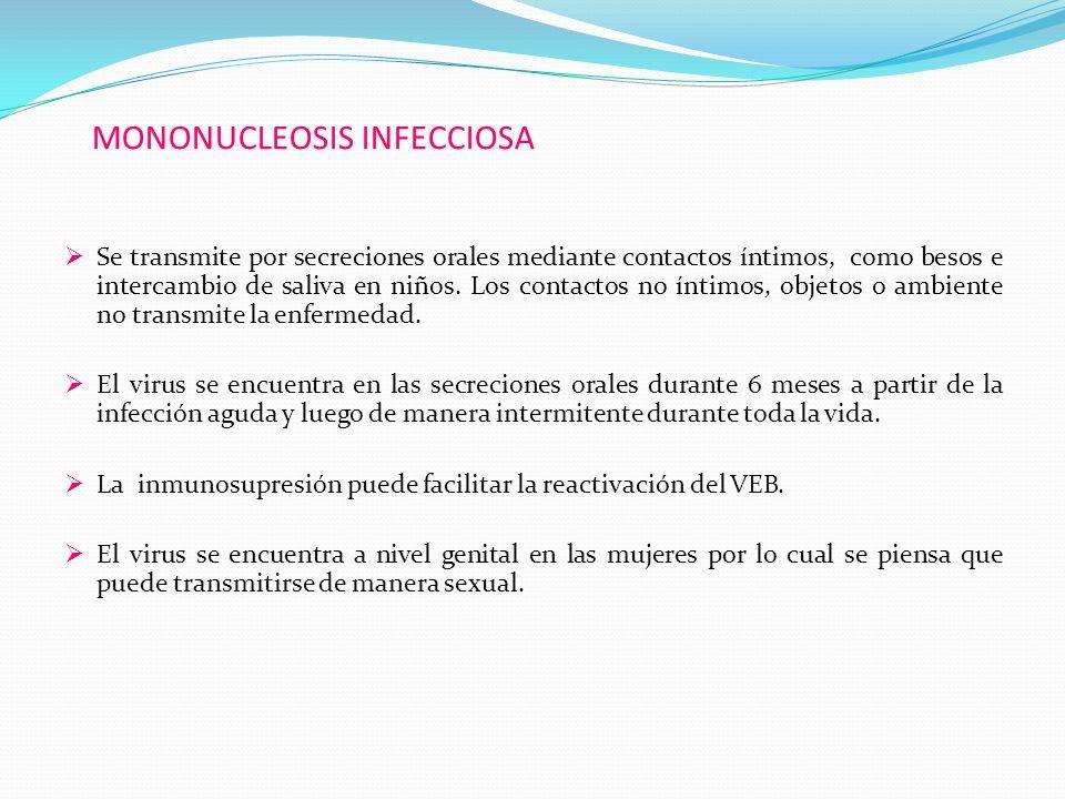 MONONUCLEOSIS INFECCIOSA Se transmite por secreciones orales mediante contactos íntimos, como besos e intercambio de saliva en niños. Los contactos no