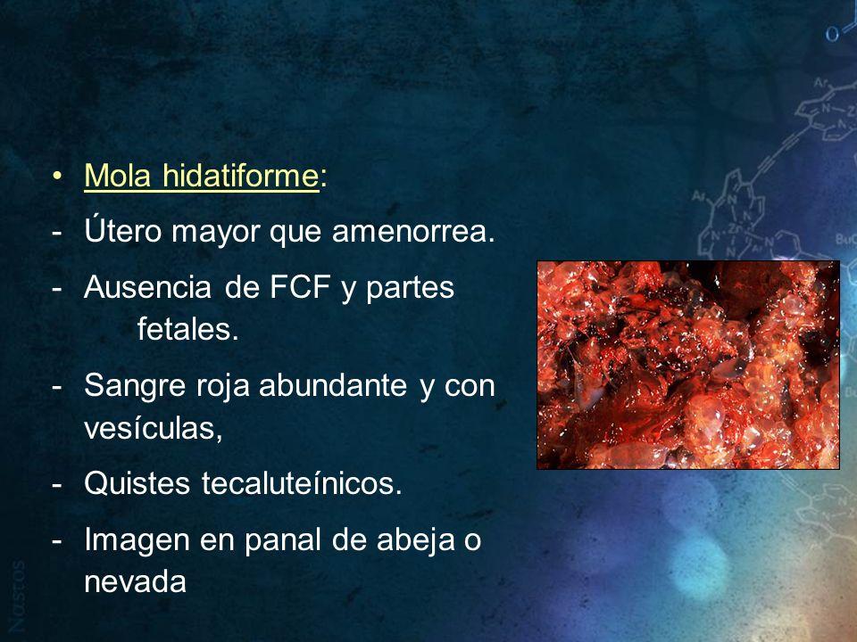 Mola hidatiforme: -Útero mayor que amenorrea. -Ausencia de FCF y partes fetales. -Sangre roja abundante y con vesículas, -Quistes tecaluteínicos. -Ima