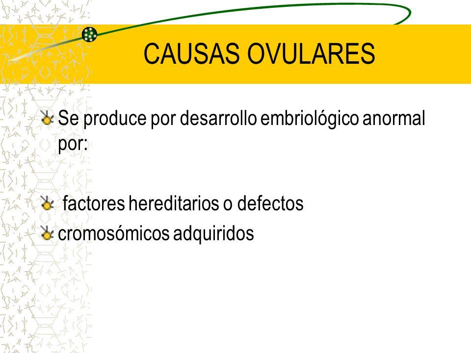 CAUSAS OVULARES Se produce por desarrollo embriológico anormal por: factores hereditarios o defectos cromosómicos adquiridos