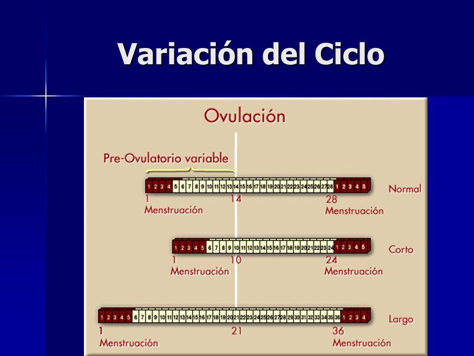 Variación del Ciclo