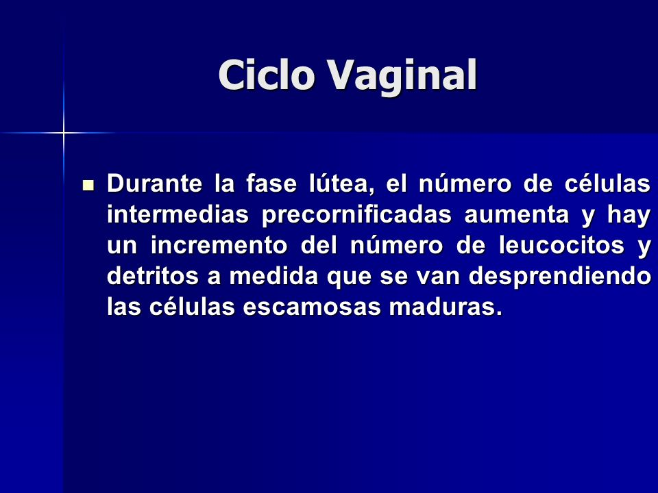 Ciclo Vaginal Durante la fase lútea, el número de células intermedias precornificadas aumenta y hay un incremento del número de leucocitos y detritos a medida que se van desprendiendo las células escamosas maduras.