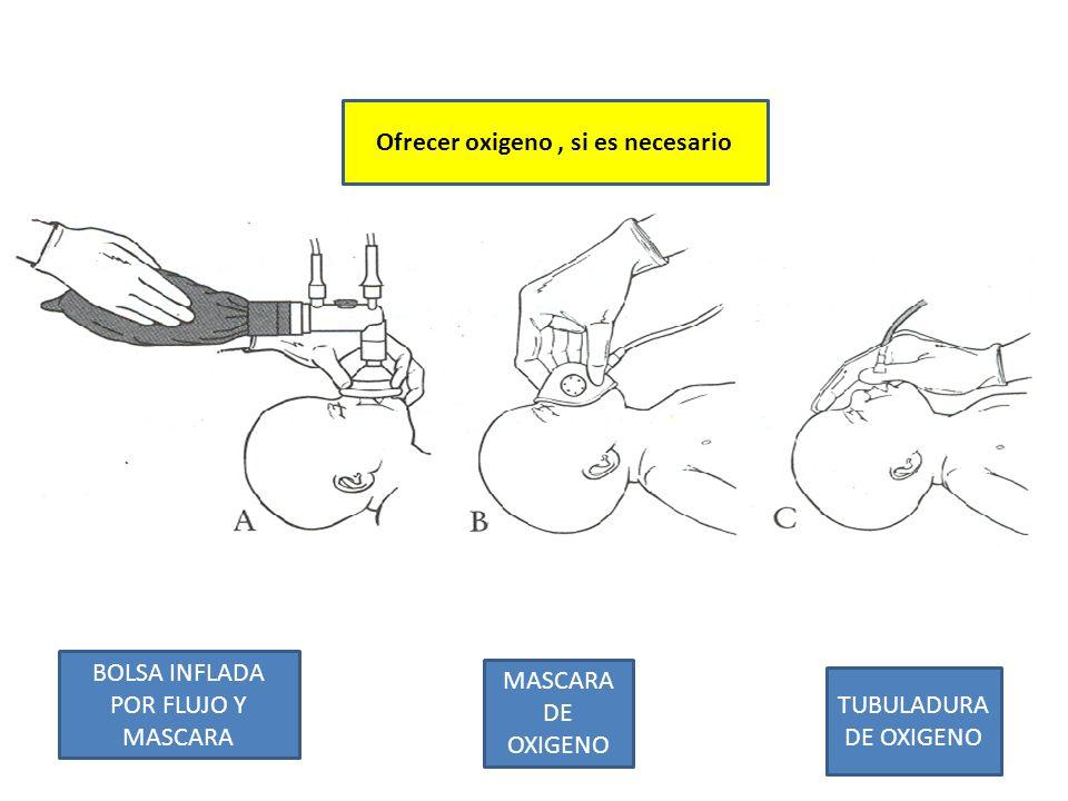 Ofrecer oxigeno, si es necesario BOLSA INFLADA POR FLUJO Y MASCARA MASCARA DE OXIGENO TUBULADURA DE OXIGENO