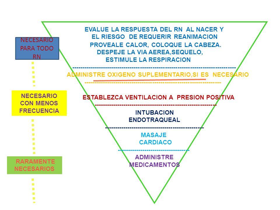 EVALUE LA RESPUESTA DEL RN AL NACER Y EL RIESGO DE REQUERIR REANIMACION PROVEALE CALOR, COLOQUE LA CABEZA. DESPEJE LA VIA AEREA,SEQUELO, ESTIMULE LA R
