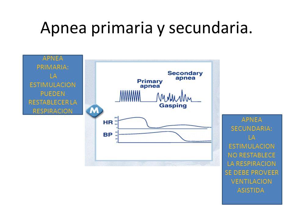 Apnea primaria y secundaria. APNEA PRIMARIA: LA ESTIMULACION PUEDEN RESTABLECER LA RESPIRACION APNEA SECUNDARIA: LA ESTIMULACION NO RESTABLECE LA RESP