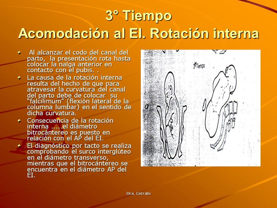 Dra. Cerrato 3° Tiempo Acomodación al EI. Rotación interna Al alcanzar el codo del canal del parto, la presentación rota hasta colocar la nalga anteri